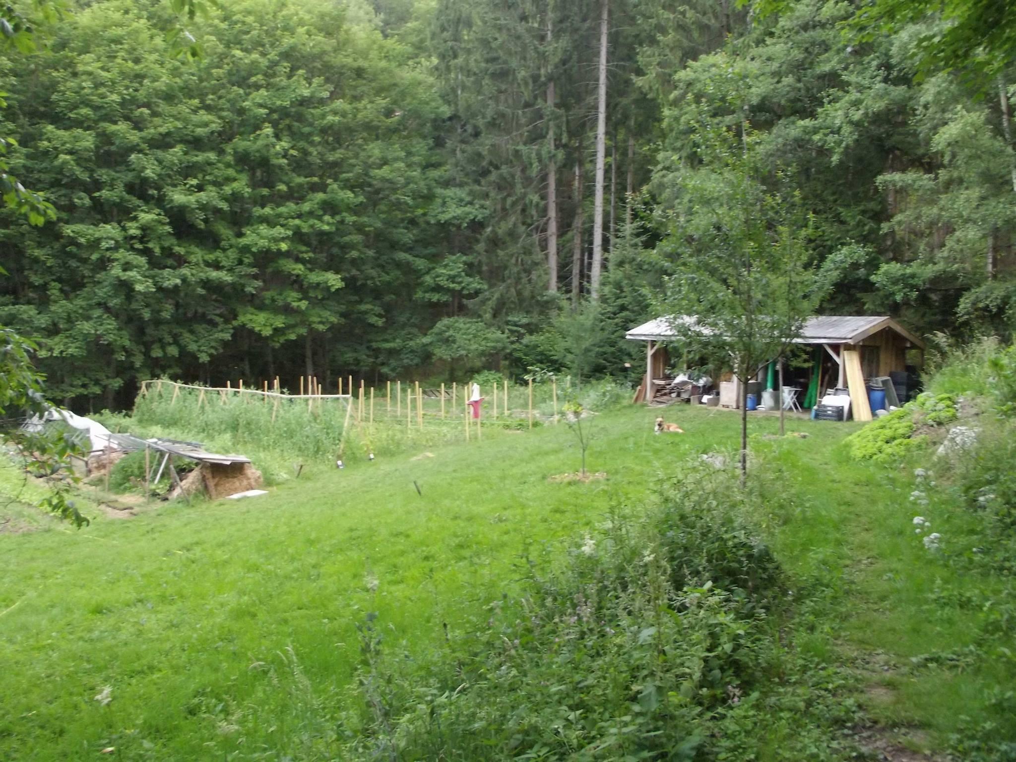 groupe nature et progrès lorraine alsace