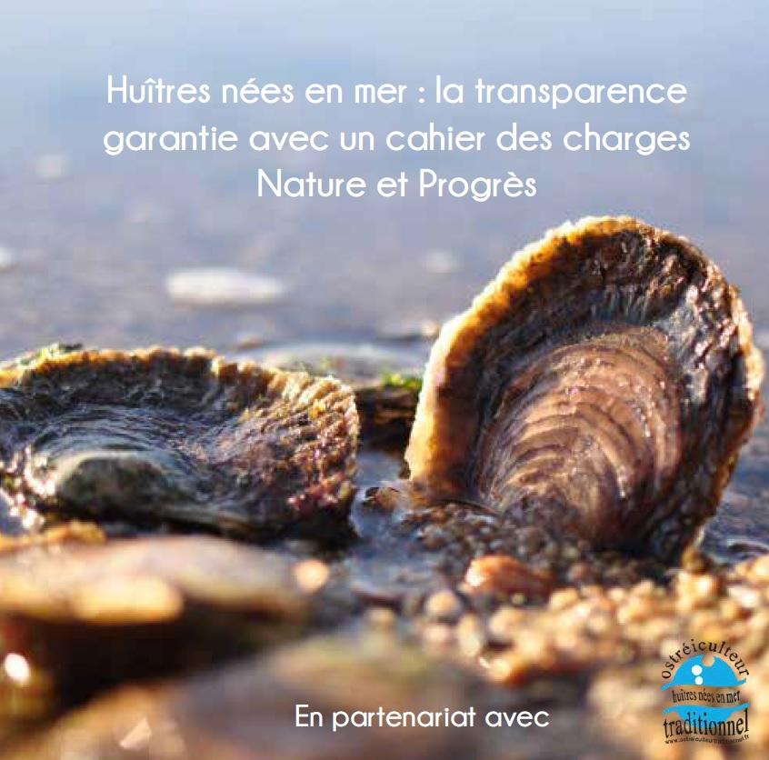 Des huîtres nées et élevées en mer, garanties par un cahier des charges Nature et Progrès