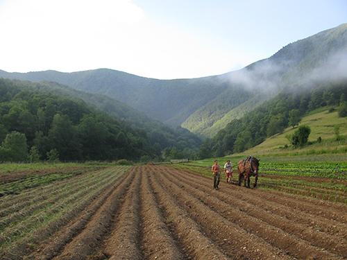agroécologie paysanne
